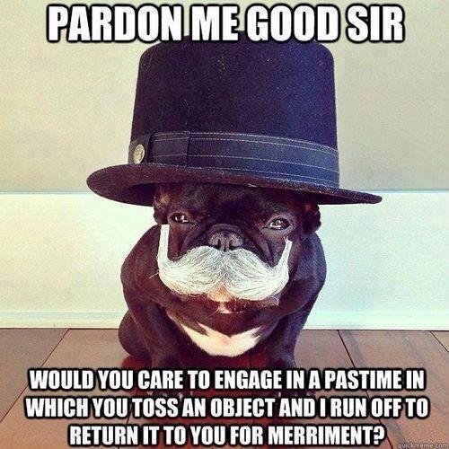 Pardon Me, Good Sir . . .