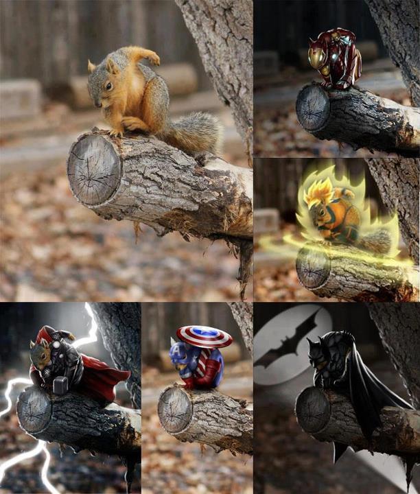 Super Squirrel!