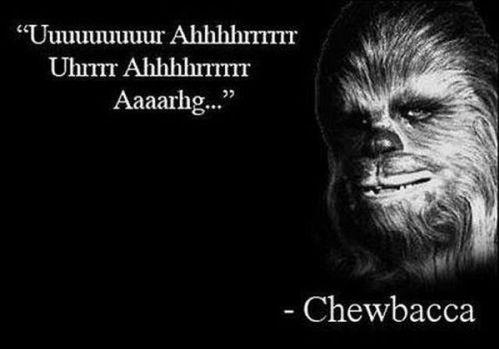 You Said It!